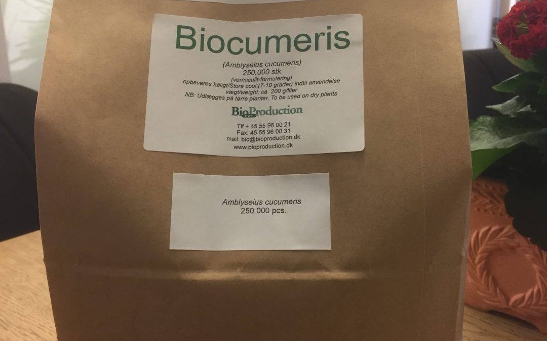 Miljøvenlig emballage